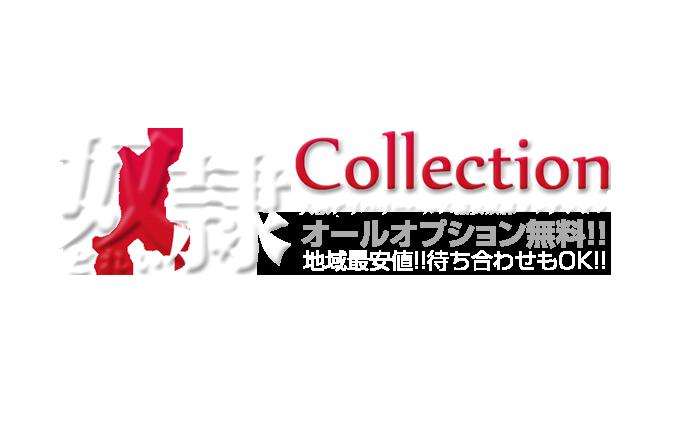 大阪・日本橋待ち合わせ&デリバリーヘルス|奴隷コレクション 公式サイト